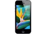 Apple iPhone 5 16GB(貿)